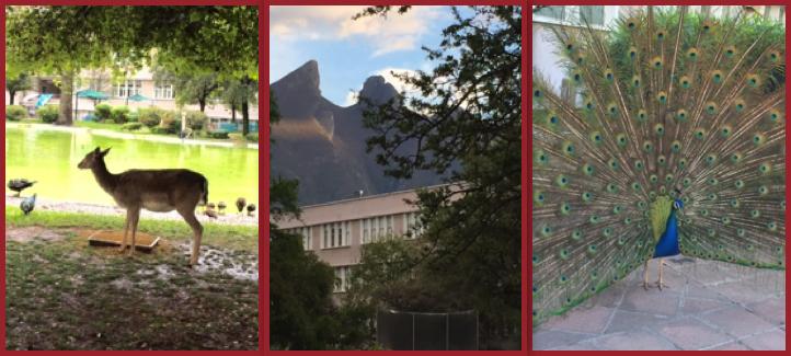 Très beau campus