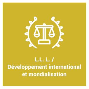 Programme d'étude L.L. L. / Développement international et mondialisation