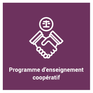 pictogramme du programme d'étude - Programme d'enseignement coopératif