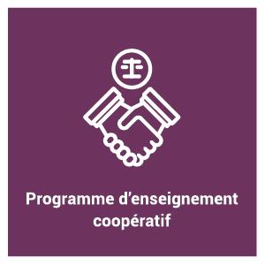 pictogramme du programme d'étude - Programme d'enseignement coopératif