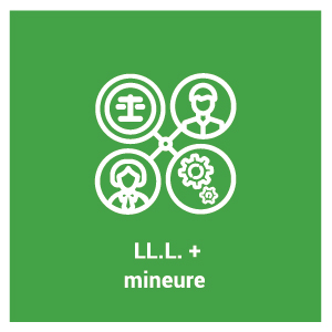 pictogramme du programme d'étude LL.L. avec mineure